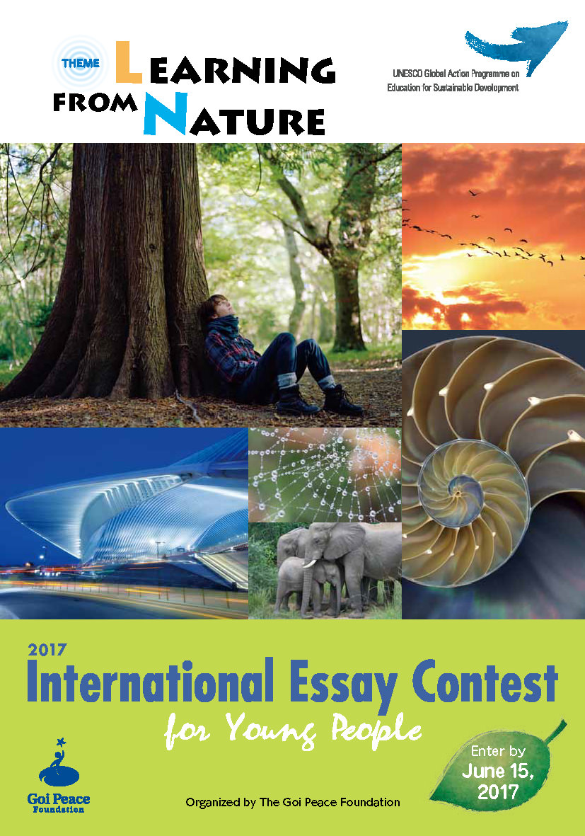is world peace a dream or reality essay