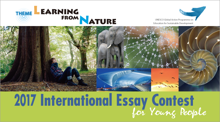 essay and writing contests